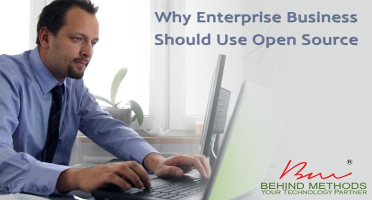 Business Enterprise & Open Source